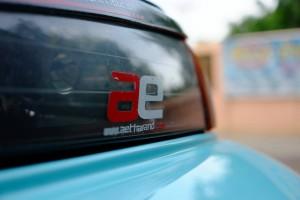 AE101 THDM  (24)