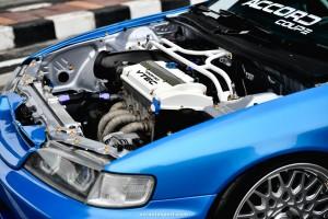 Ohm Xenon Accord Coupe TSN_4665
